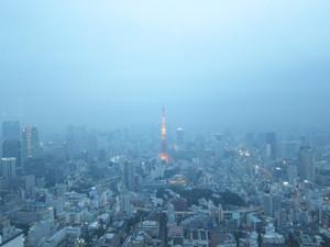 東京シティビューより東京タワーを望む。どう見てもデートスポットです。